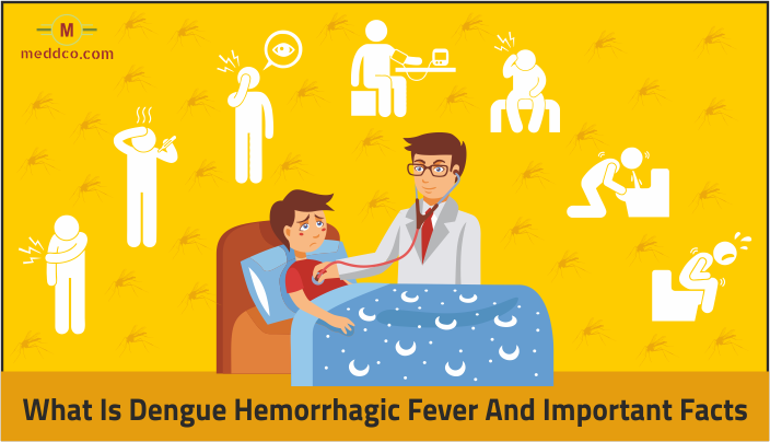 What is Dengue Hemorrhagic Fever and Its Important Facts
